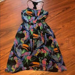 Little Girls Bird Dress